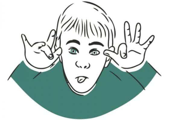 S02. El temperamento en relación con el comportamiento y la conducta
