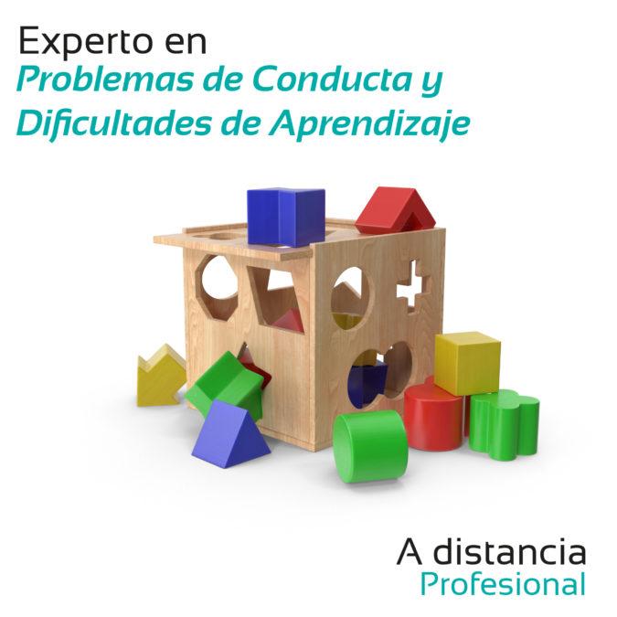 Experto en Problemas de Conducta y Dificultades de Aprendizaje- A distancia – Profesional