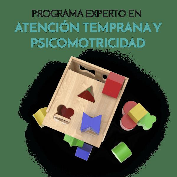 PROGRAMA EXPERTO EN at y psicomotricidad